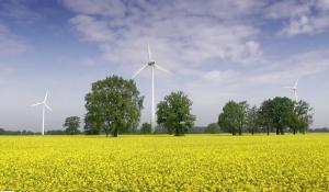 Windkraft: Die Energiewende kommt!